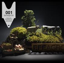 Web EFEAGRO. Un proyecto de Diseño, Ilustración, Publicidad, Fotografía e Informática de Kata Zapata - 05-04-2010