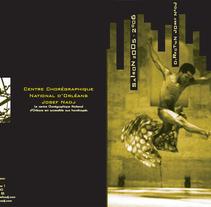 Programme. Un proyecto de Diseño de Laure Chassaing         - 27.04.2010