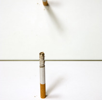 Still life. A Photograph project by Irune Michelena          - 20.12.2010