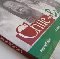 Chile Pinta o Brasil. A  project by Marcela Peña         - 08.07.2011