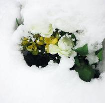 Profunditats. Un proyecto de Fotografía de Nagore Igarza         - 05.01.2012