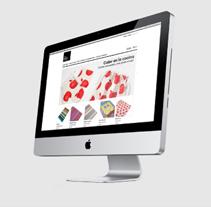 RCF | eshop. Um projeto de Design, Publicidade e UI / UX de Isma Latasa de Araníbar Marsal         - 27.01.2012