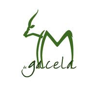 4 metros de gacela. A Design, Film, Video, and TV project by Gerard Magrí         - 30.04.2012