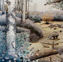 Ilustración Naturalista. Um projeto de Ilustração de José Luis Ferrando Viñola         - 14.09.2012