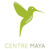 Centre Maya. Creación de logotipo y diseño web. A Graphic Design, and Web Design project by Blanca Enrich         - 23.06.2014