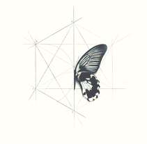 Process elements. Um projeto de Ilustração, Design editorial e Design gráfico de Guillermo Vázquez         - 25.02.2015