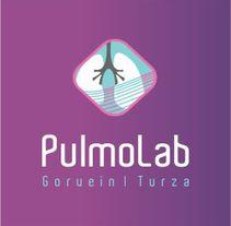Pulmolab - Diseño y Desarrollo Web. A Web Design, and Web Development project by Rodrigo Gomez         - 16.07.2015