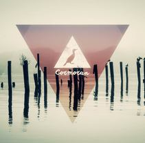 Cormorán. A Design, Film, Video, TV, and Animation project by Sergi Esgleas         - 25.10.2015