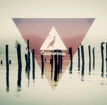 Cormorán. Um projeto de Design, Cinema, Vídeo e TV e Animação de Sergi Esgleas         - 25.10.2015