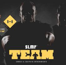SLMF/Research & Estrategia & SEO. Un proyecto de Marketing de Laura De los Santos         - 10.04.2016