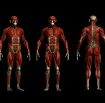 practice male ecorche in class zbrush. Um projeto de 3D, Animação, Design de personagens e Escultura de Toni Rubio Gutierrez         - 14.02.2016