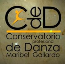 """Video Promo :: Conservatorio Profesional de Danza """"Maribel Gallardo"""" de Cádiz. Um projeto de Motion Graphics, Cinema, Vídeo e TV, Educação, Artes plásticas, Pós-produção e Vídeo de Javi de Lara         - 11.12.2010"""