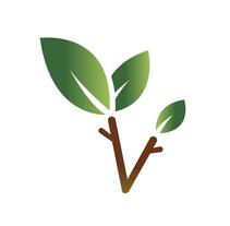 Farmacia Vida - Identidad Corporativa. A Br, ing&Identit project by Sergi Sola - 24-03-2016
