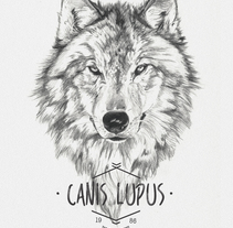 CANIS LUPUS. A Illustration project by miguel sastre - 30-08-2017