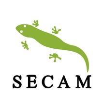 Logotipo Secam. Un proyecto de Diseño, Br, ing e Identidad, Diseño de iconos y Diseño de pictogramas de Sergio Campo - 19-10-2017