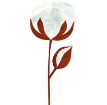 Flor de algodón. A Illustration, Product Design, and Vector illustration project by María  León         - 25.01.2018